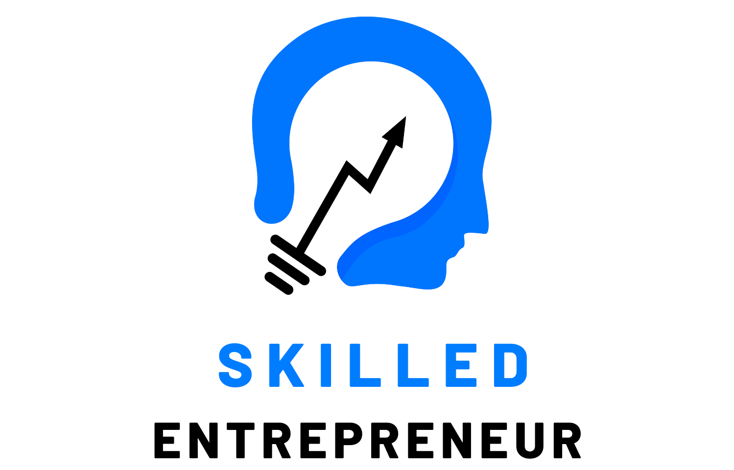 Skilled Entrepreneur